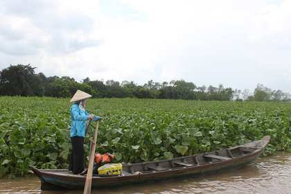 Vietnam - Mekong Delta1