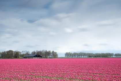 best places in netherlands