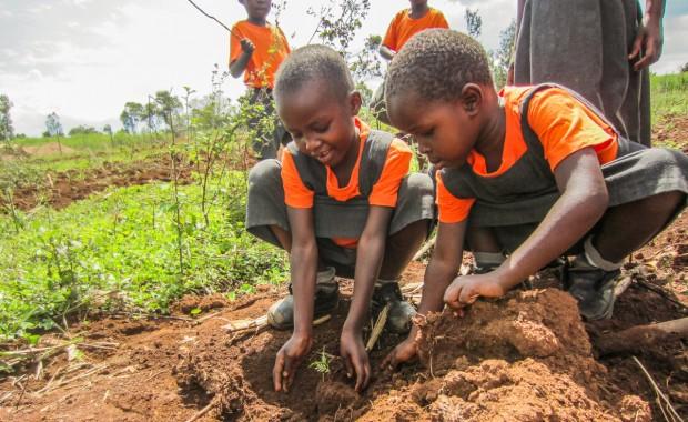 Nyota_Tree-planting-kenya-1299