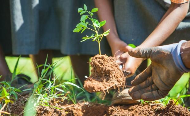 1410_Nyota_Tree_Planting-0544
