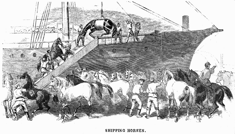 Black-and-white illustration from Harper's Weekly magazine showing horses being loaded onto a ship.