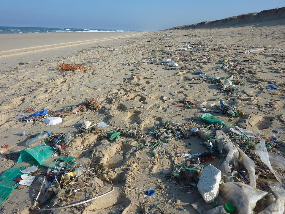 Havet trenger en redningsaksjon