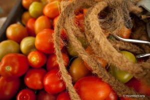 Tomatos Africa Nyumbani