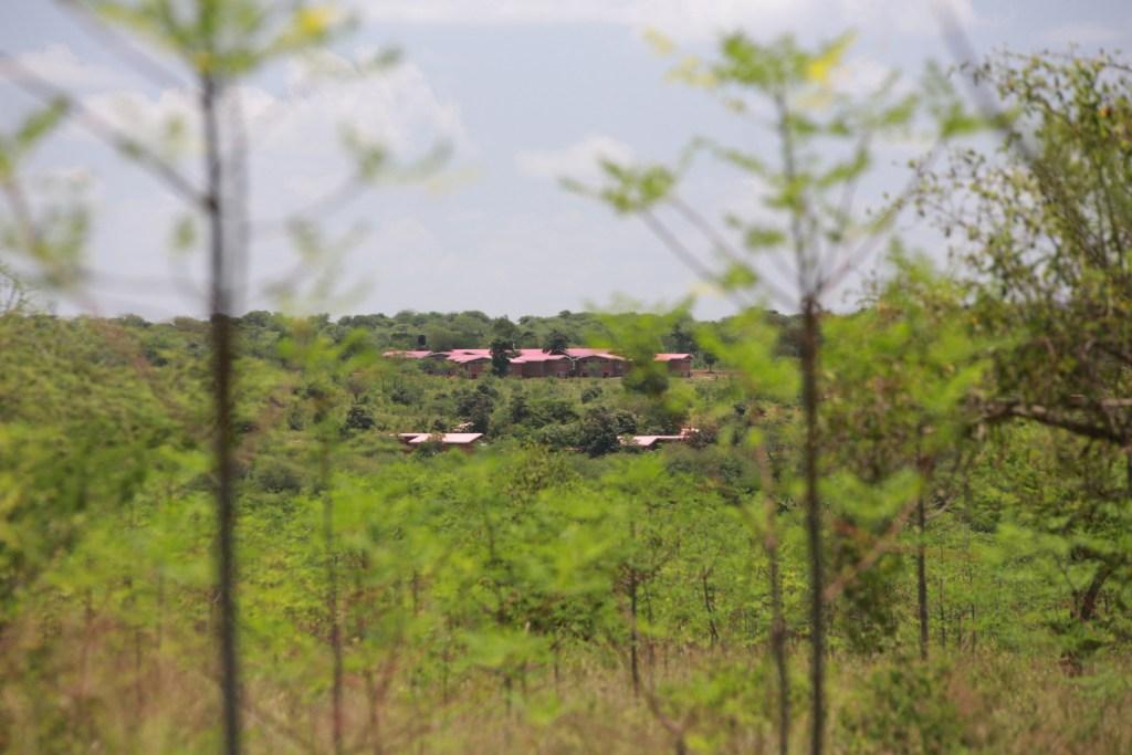 Landscapes of Nyumbani Village