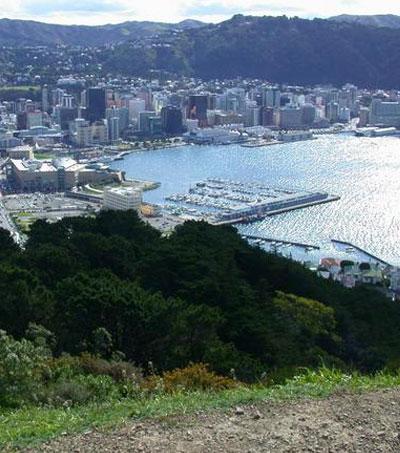 Fun Things To Do In Wellington