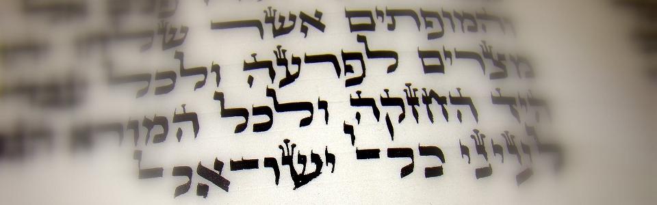 Torah960x300