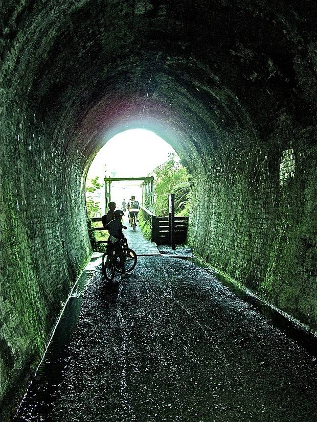 A section of the Hauraki Rail Trail at Waikino. Photo / Supplied