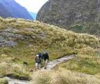 First step in creation of Fiordland National Park