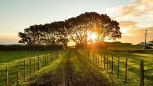 サーフトリップに『混雑とは無縁』のニュージーランドを選ぶべき理由