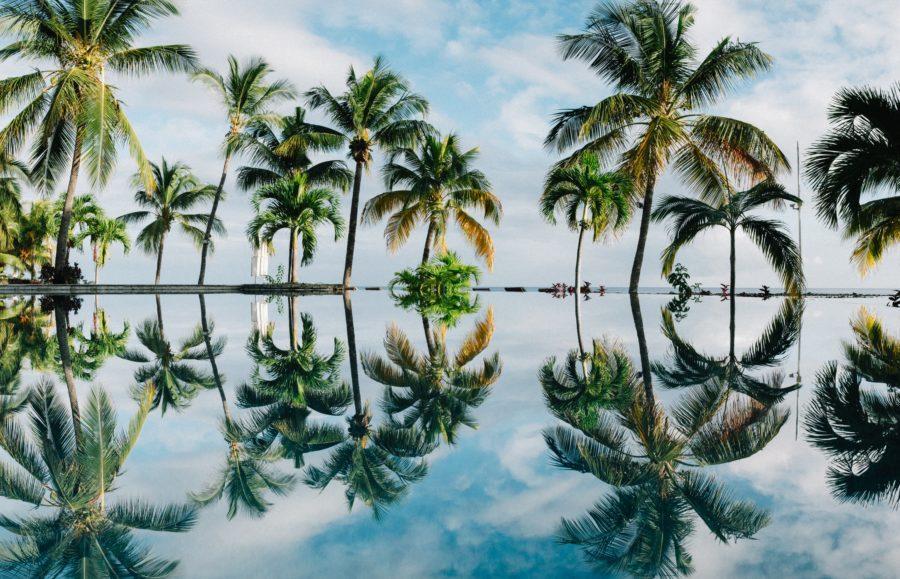 ハワイへのサーフトリップは時差ボケが多い