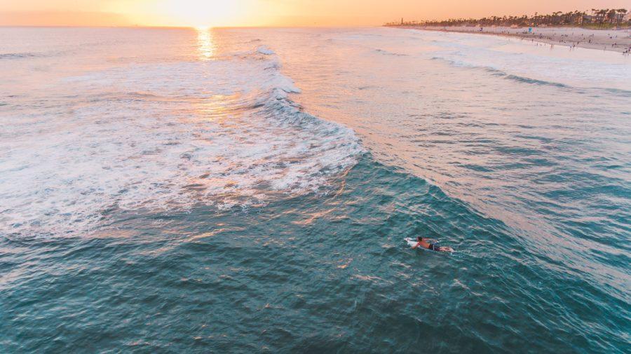 サーフボードのデザインを理解すればサーフィンがもっと楽しくなる