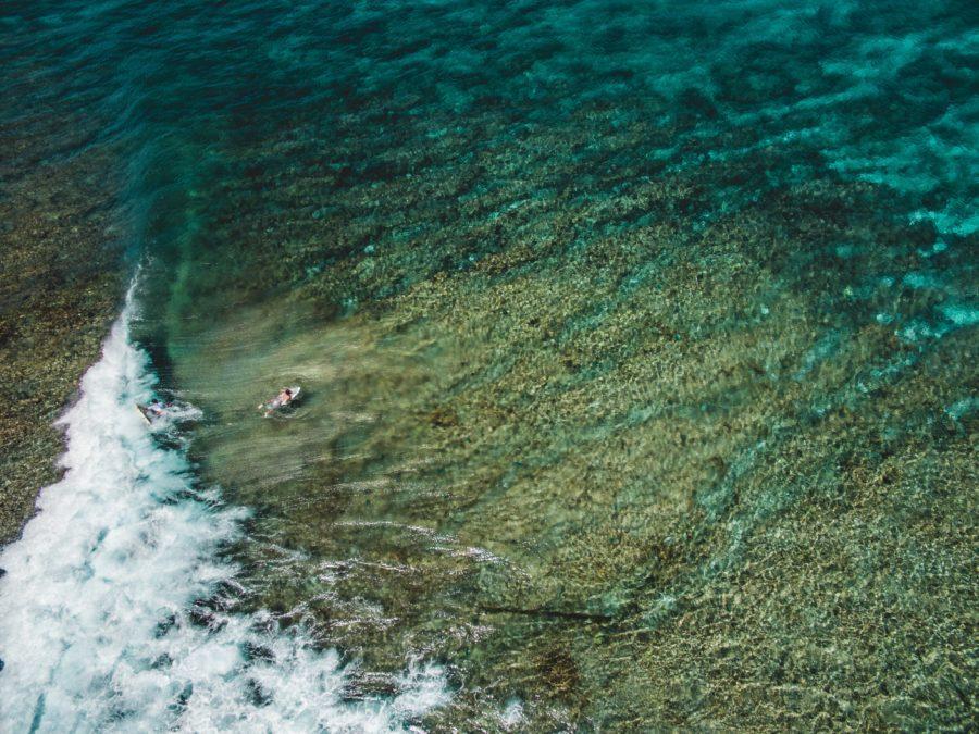サンゴ礁(リーフブレイク)でのサーフィンを楽しむために必要なこと