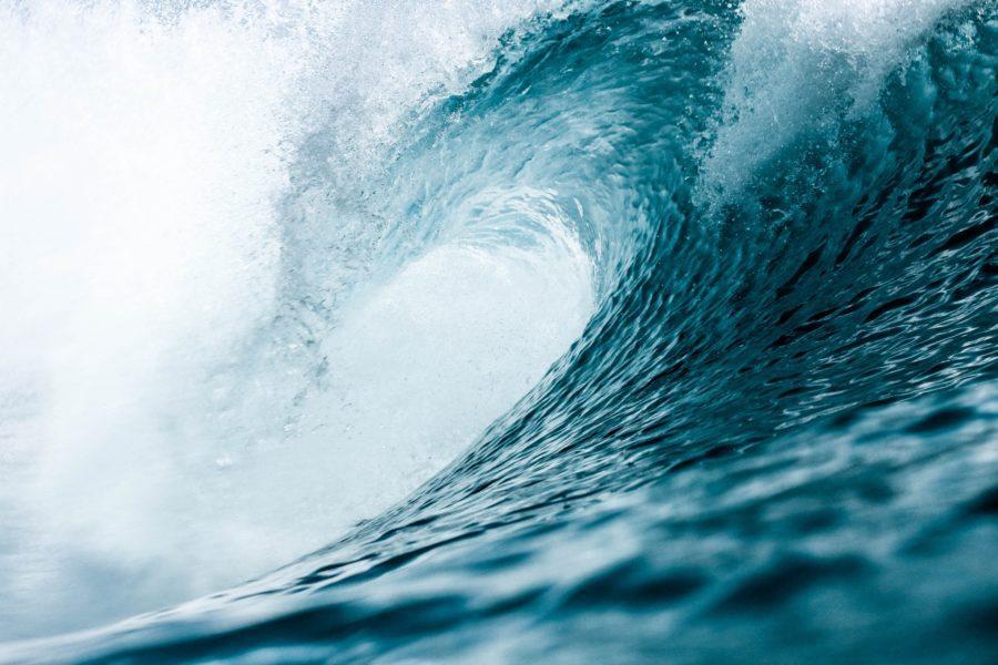サーフィン留学で海外の波を堪能