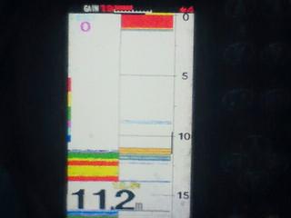 201102082.jpg