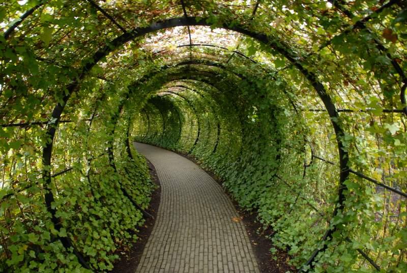 Image result for the posien garden