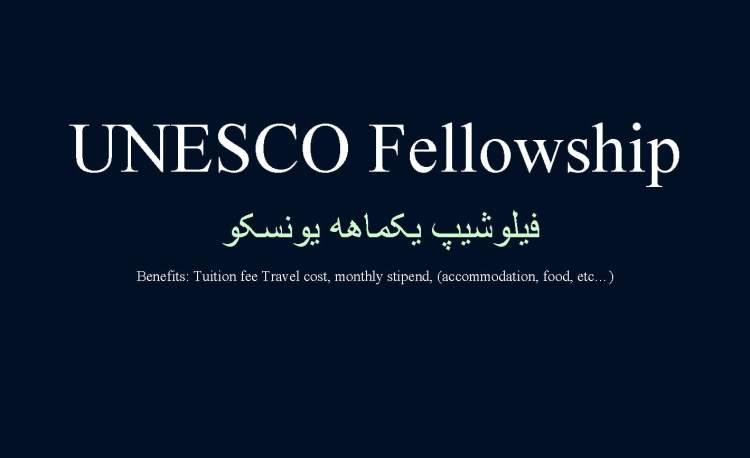 UNESCO Fellowship