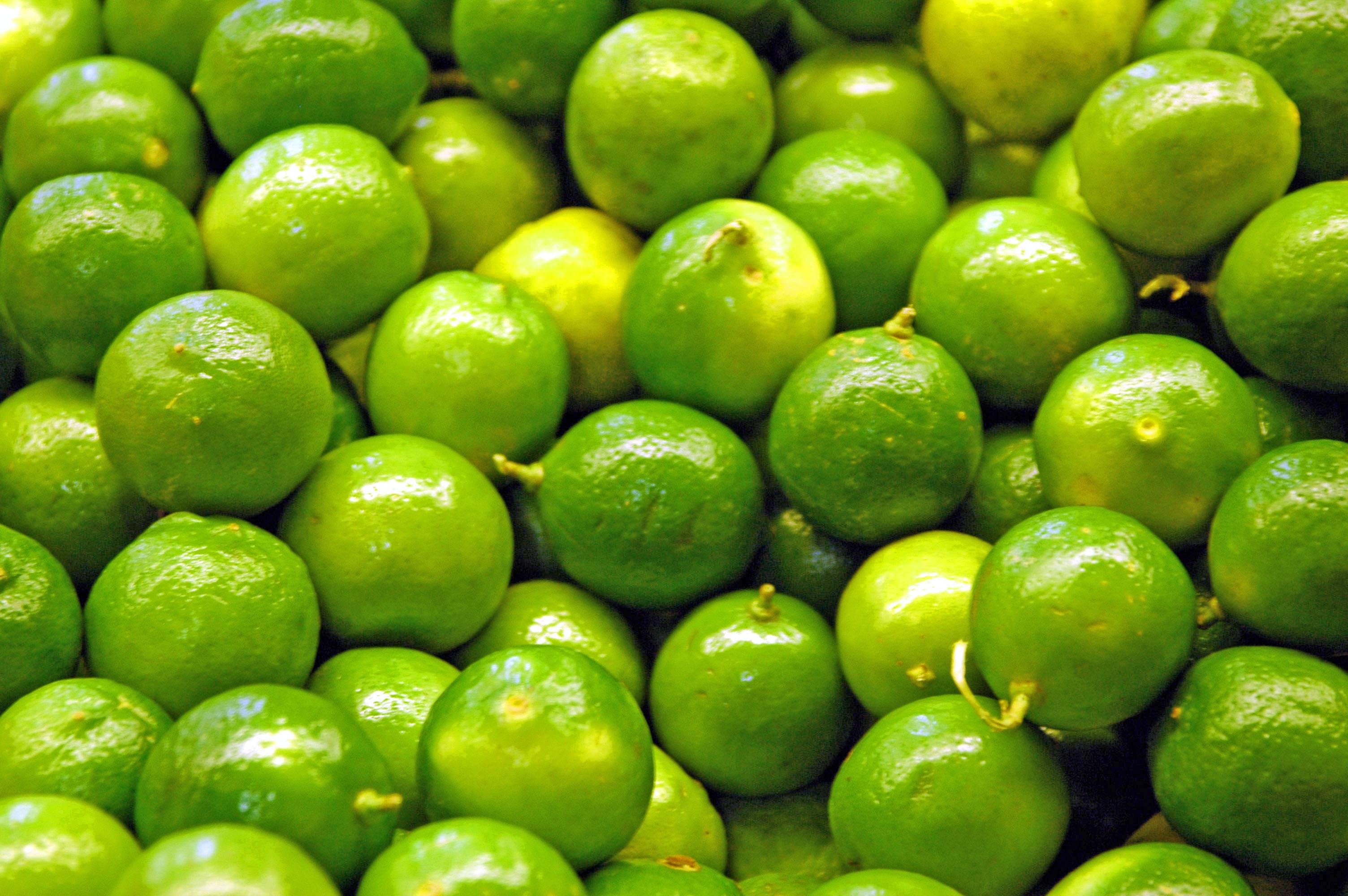 What Fresh Key Lime Juice