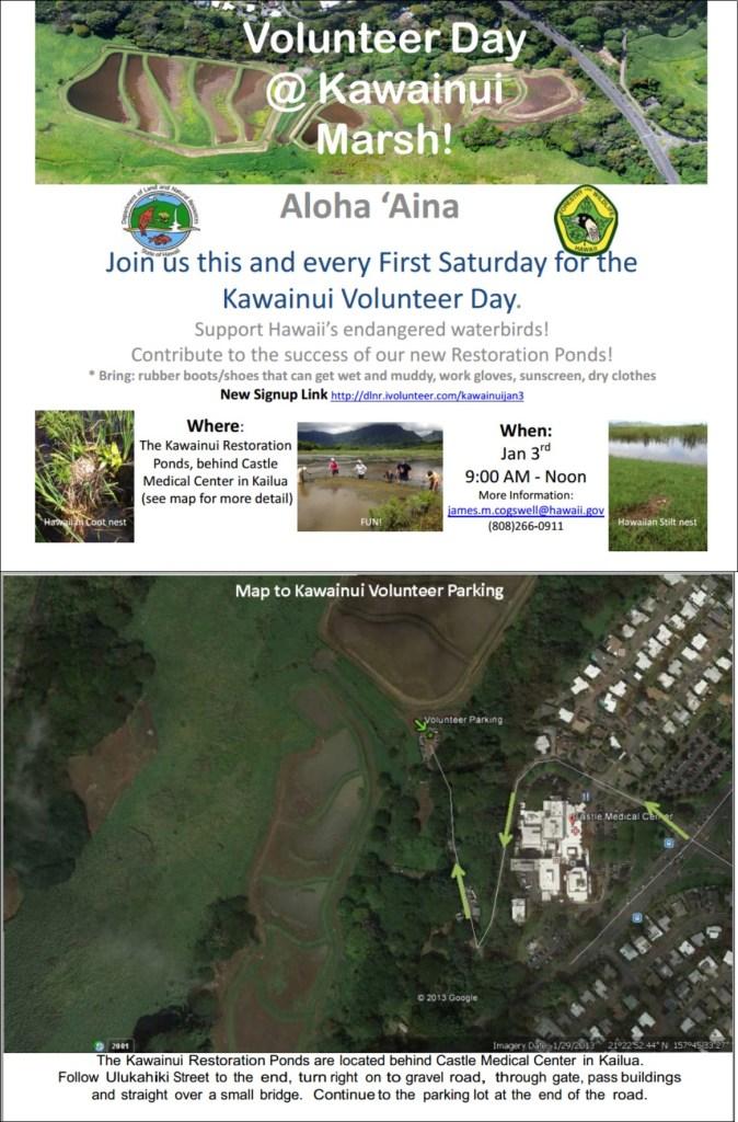 Kawainui Volunteer Day Flyer Jan 3