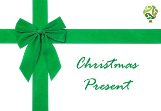 Post of Christmas Present
