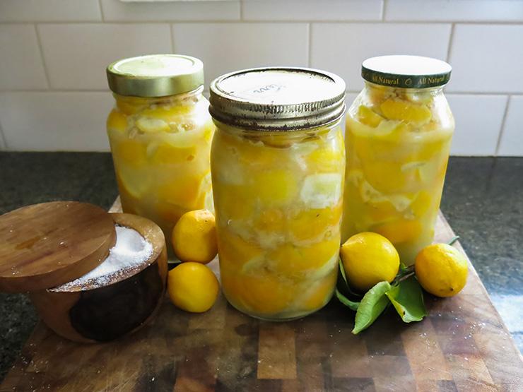 Lemons 6