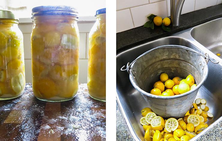 Lemons in sink