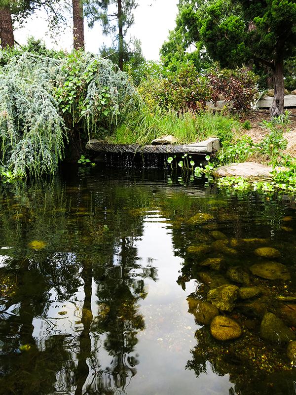 LM Garden 16