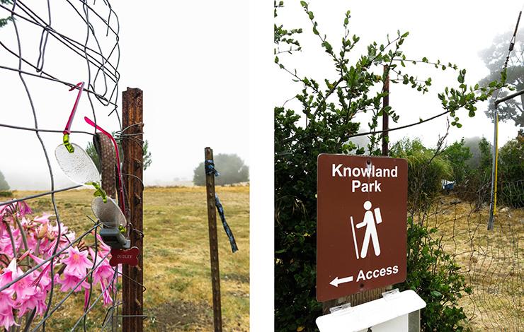 Knowland 3
