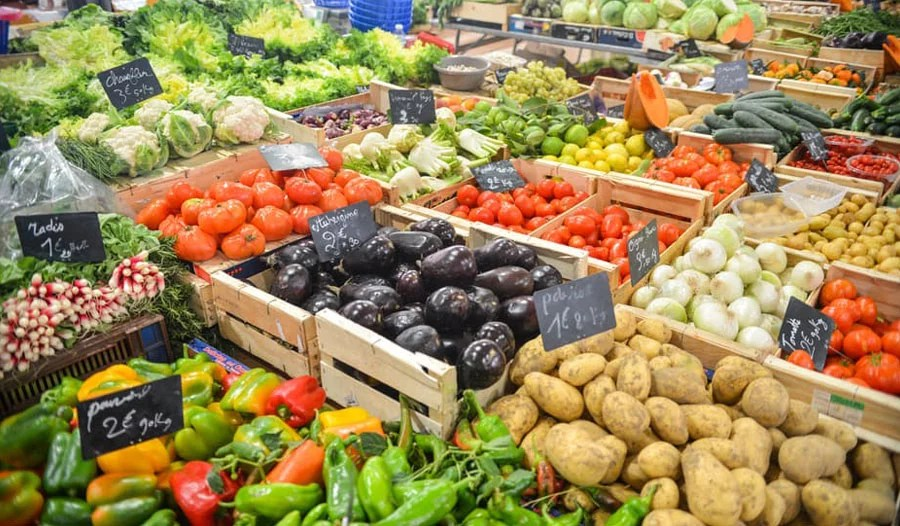 Vegetarian diets are not only healthy for people, but the environment as well
