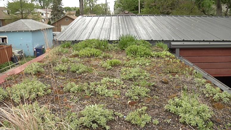 Green roof on garage. Photo by Kevin J. McCarey