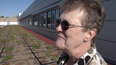Karen Rozmus on Public Works green roof. Photo by Kevin J. McCarey