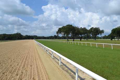 Oak-Ridge-Training-Center-turf course