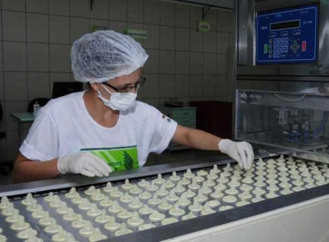 Em 2012 a Natex produziu mais de 70 milhões de preservativos masculinos (Foto: Arquivo Secom)