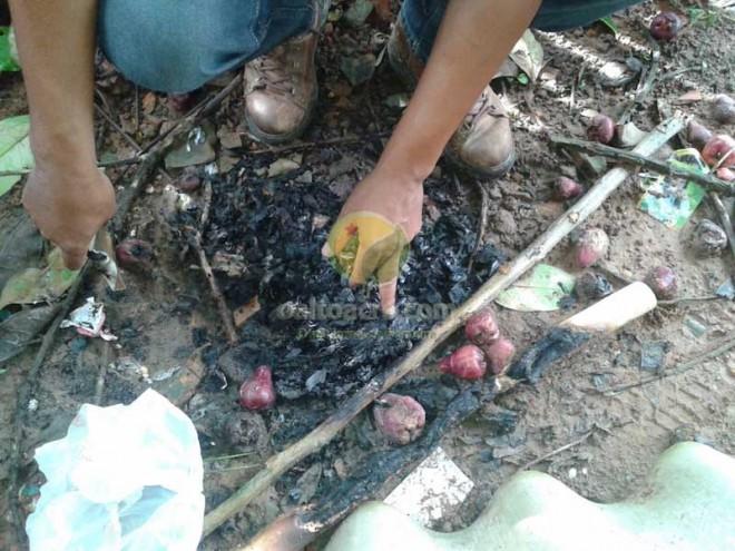 Papeis queimados no quintal do menor comprova a ligação em assaltos na lado boliviano.