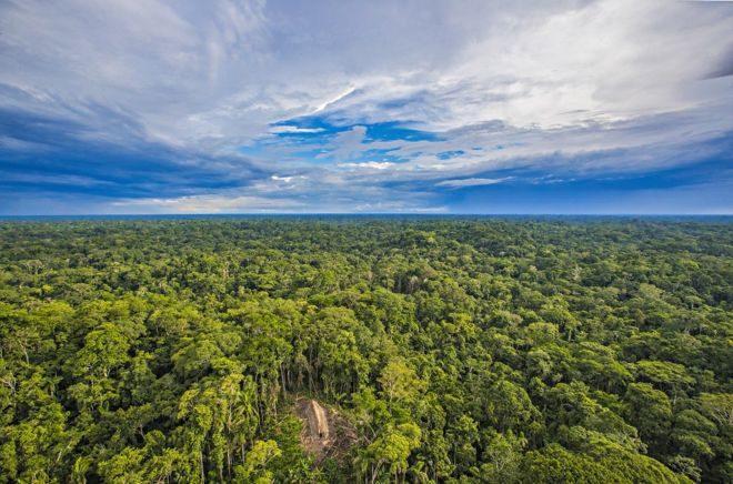 Visão panorâmica da localização da aldeia /Foto: Ricardo Stuckert