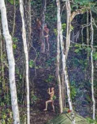 Comunidade indígena totalmente isolada no meio da Floresta Amazônica /Foto: Ricardo Stuckert