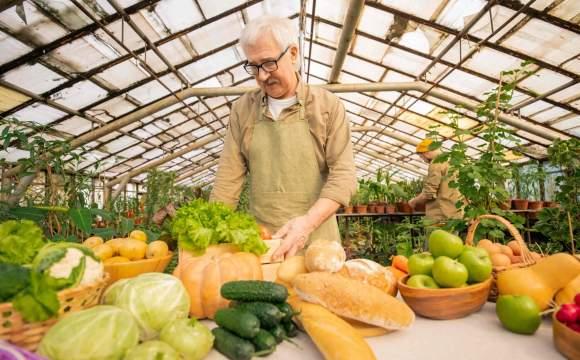 生態農業是朝向農業更永續的關鍵?
