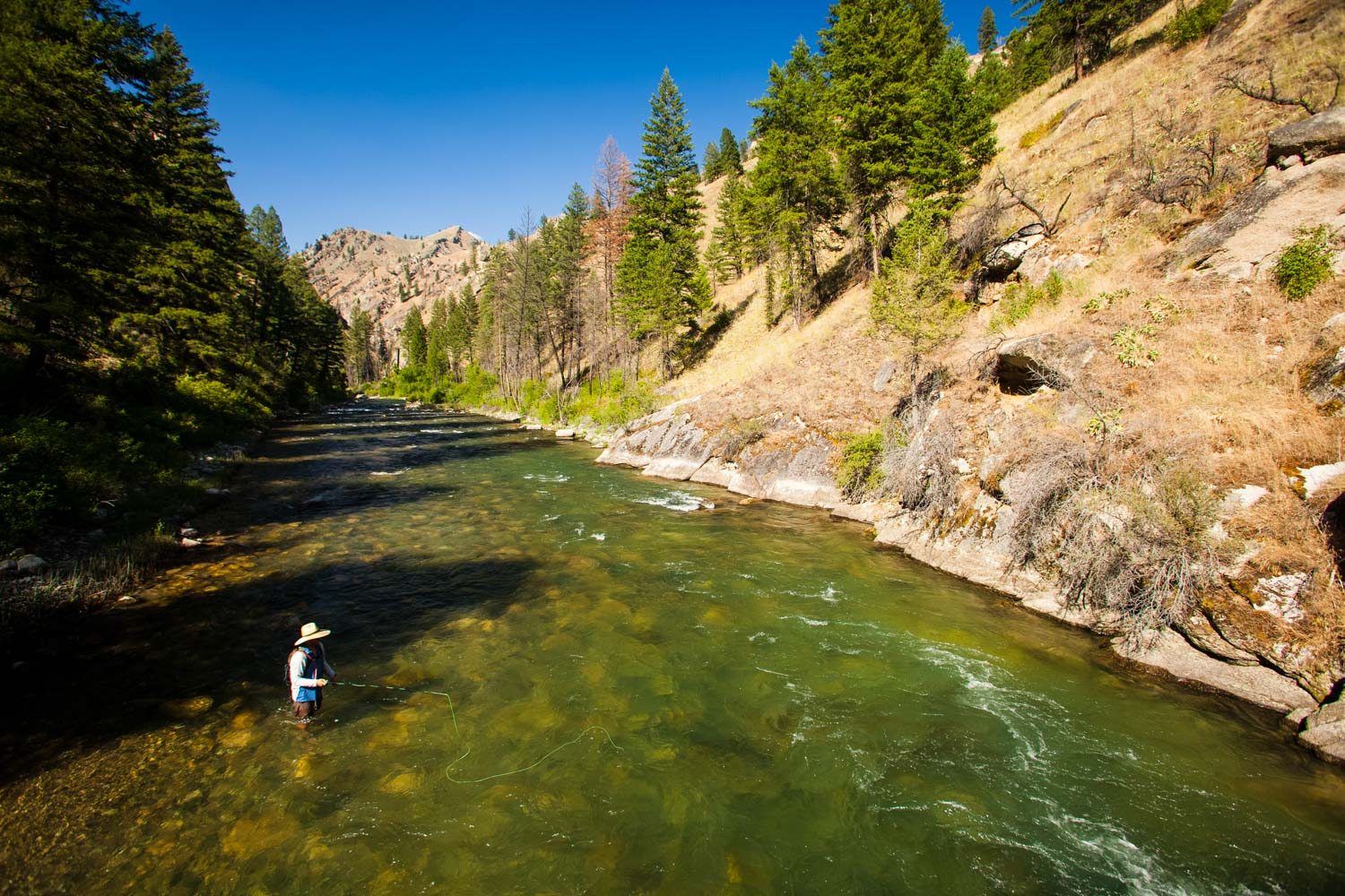 Middle Fork Salmon Drowning