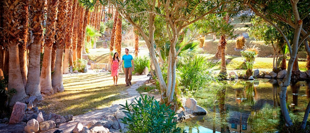 Water Conservation At The Oasis At Death Valley Oasis At