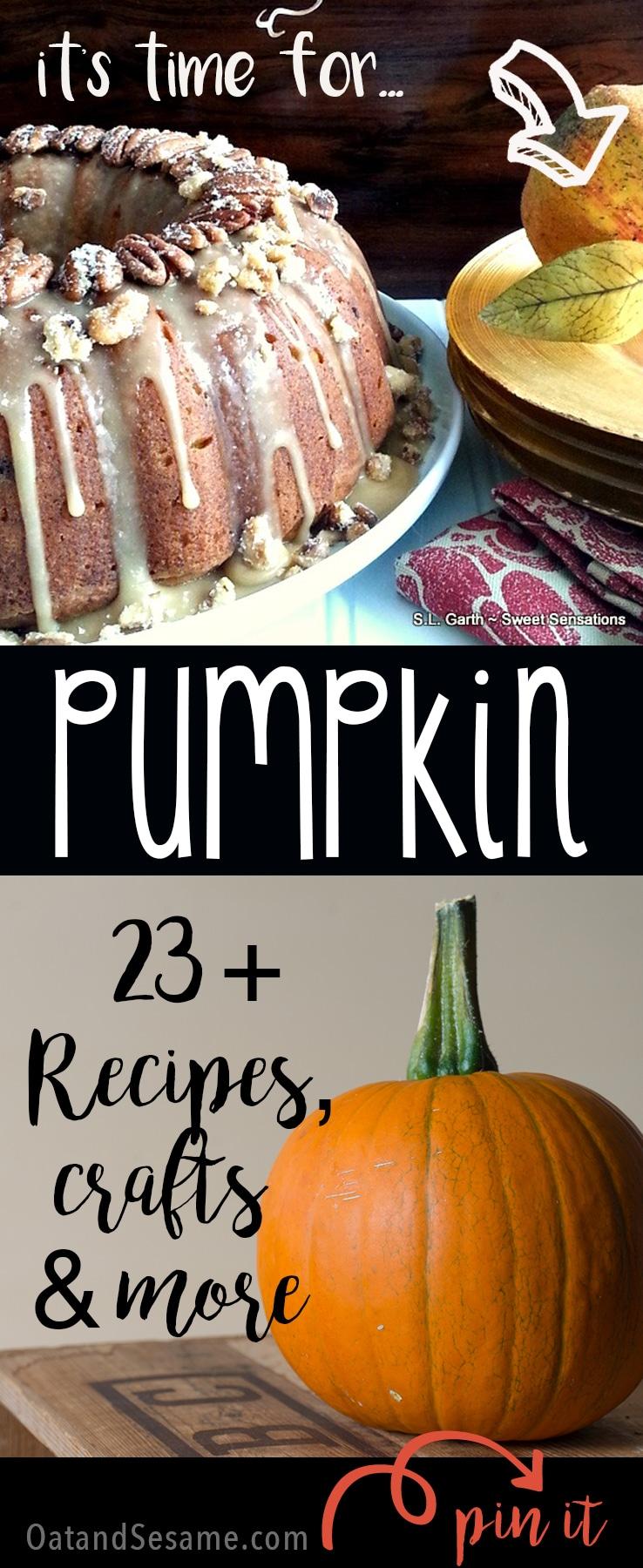 23 + Awesome Pumpkin Recipes, Crafts & More! Celebrate #Fall   Recipe at OatandSesame.com