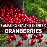 17 Amazing Health Benefits of Cranberries