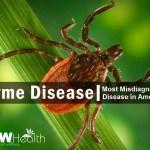 Lyme Disease Most Missed Diagnosed Disease in America