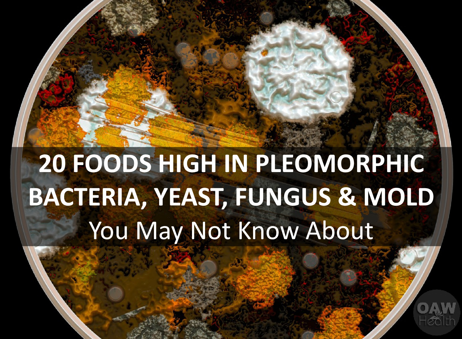 20 Foods High in Pleomorphic Bacteria, Yeast, Fungus and Mold You May Not Know About