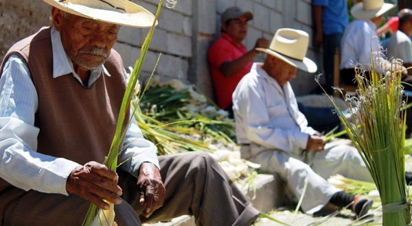 Cacaloxtepec (5)