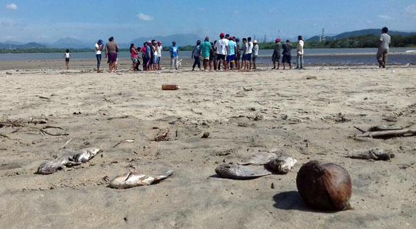 Mueren peces en laguna de la Ventosa por presunta contaminación