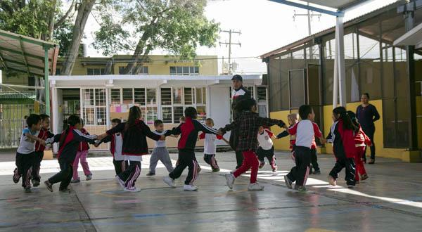 La reforma curricular en educación básica