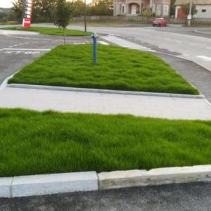 Oaza Projekt -Sejani Travnjak