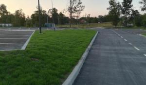 Ostrvo oko parkinga sređeno