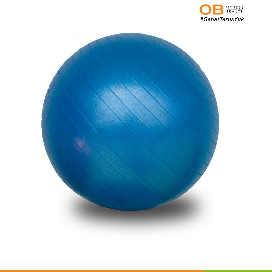 GYM BALL 65 – Merah/Biru/Pink/Abu-abu