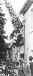 Kerb 1954