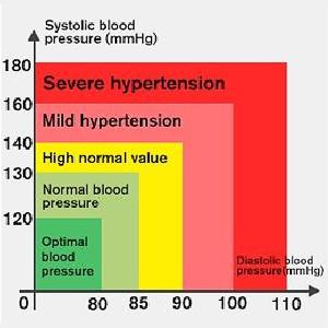 Blood Pressure Monitor LCD Display Adjustable Wrist Cuff Blood Pressure Monitors Ober Health 24